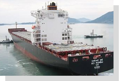 Shipping Corporation of India | Shipping Company